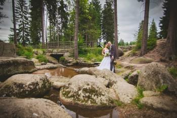 Sychrov svatba foto